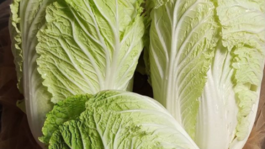 Berbagai Macam Manfaat Sayur Sawi Bagi Kesehatan Tubuh