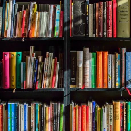 10 Tipe- Tipe Pembaca Buku, Kamu Yang Mana Nih?